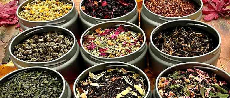 Девять разновидностей чая для похудения