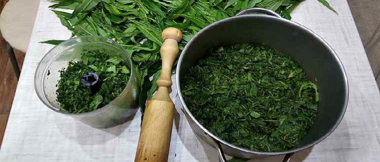 Иван чай - как собирать, сушить, приготовить 81