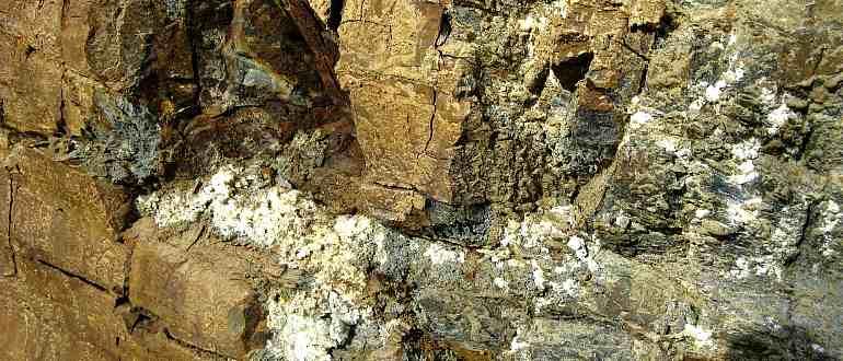 Каменное масло на горах