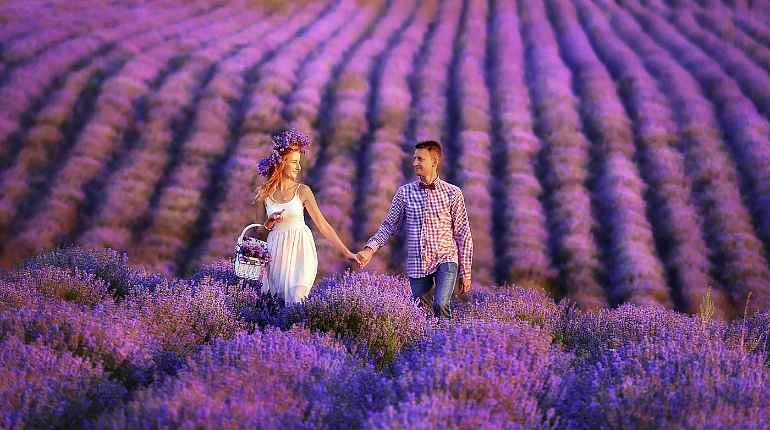 Девушка с парнем в цветочном поле
