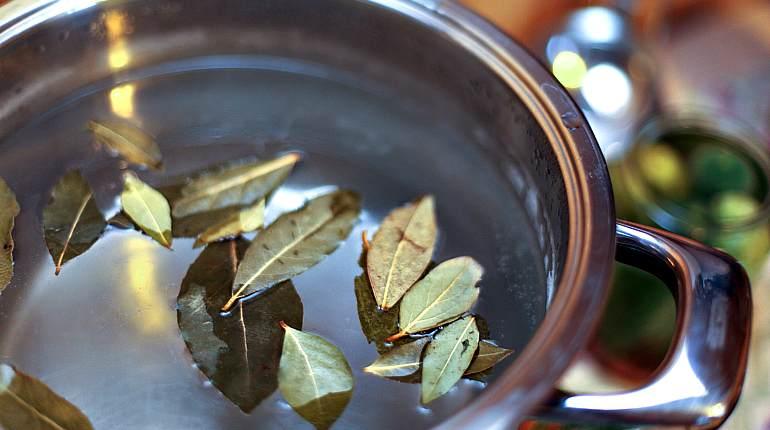 Приготовление отвара из лаврового листа