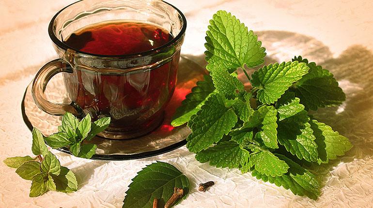 Чай с бузиной и мятой