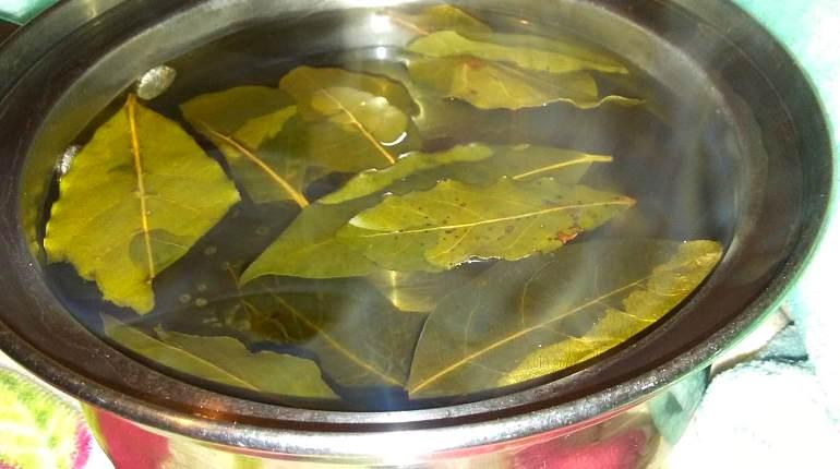 Настойка из лавровых листьев