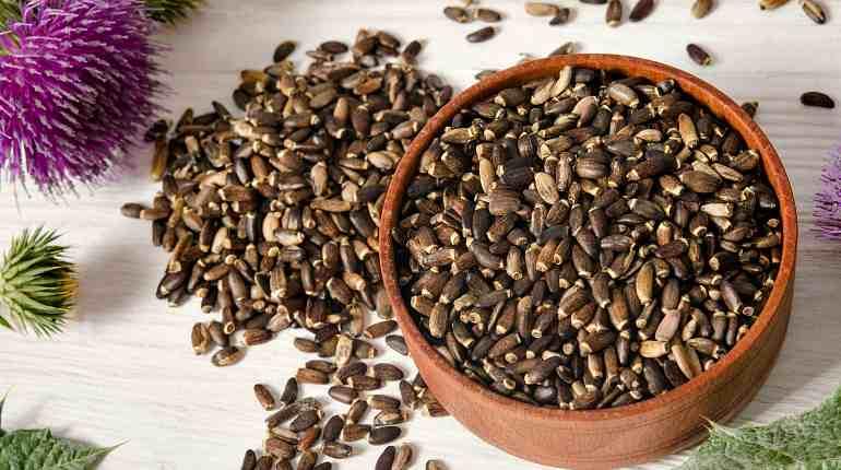 Семена и шрот расторопши