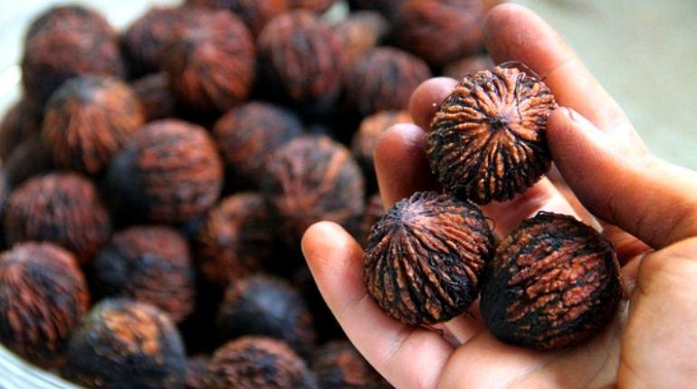 Полезные характеристики черного ореха