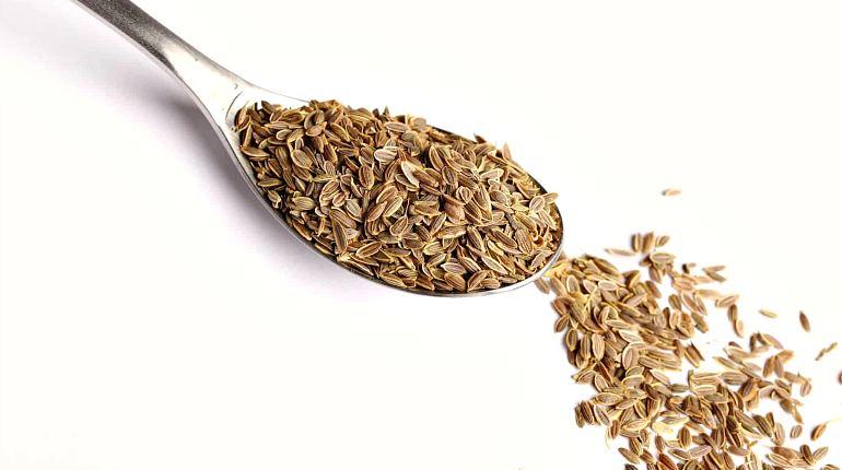 Противопоказания к приему семени укропа