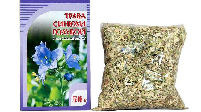 Сушеное сырье из травы синюхи голубой