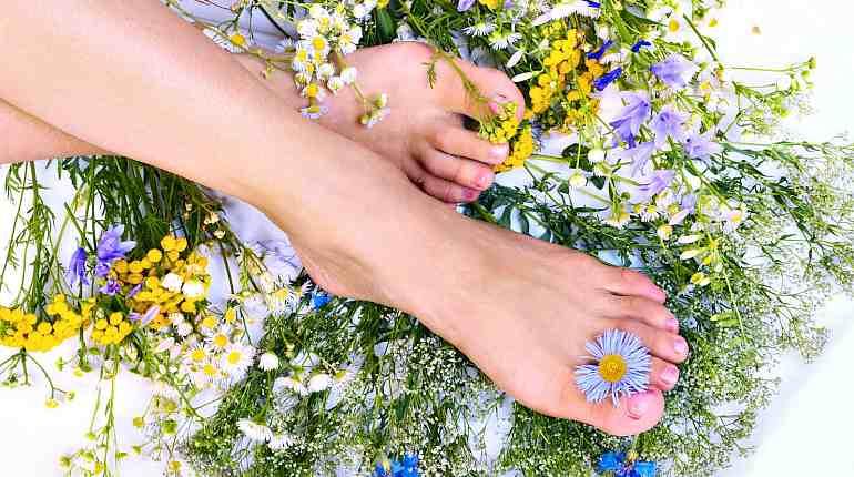 Травы для здоровья ног