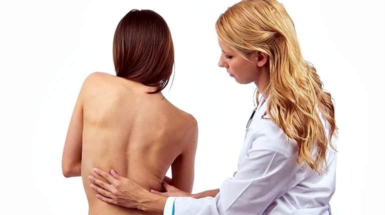 Медицинская желчь при остеохондрозе - Все про суставы